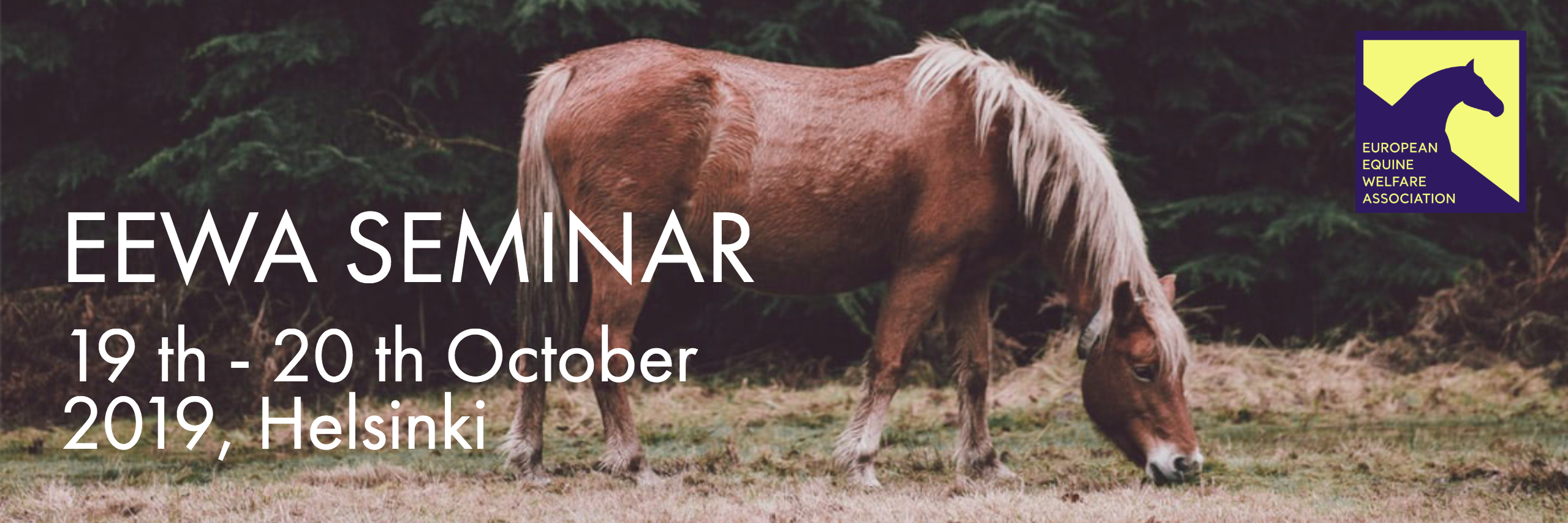 leveäbanneri_seminaari